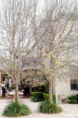 Lynn and Jamie's backyard feels like you've taken a holiday to Tuscany